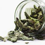 Autoproduzione: essiccare erbe aromatiche, piante spontanee e fiori