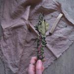 Smudge stick, incensi sciamanici: cosa sono, come farli e a cosa servono